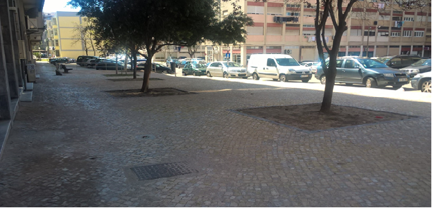 Passeio na Rua Teresa Borges